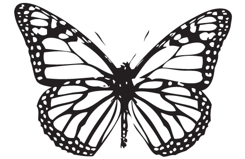 butterfly coloring pages pdf The Children's Butterfly Site butterfly coloring pages pdf